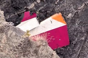 26F56B9A00000578-3010610-Destruction_The_distinctive_colours_of_the_Germanwings_plane_are-a-32_1427318142648